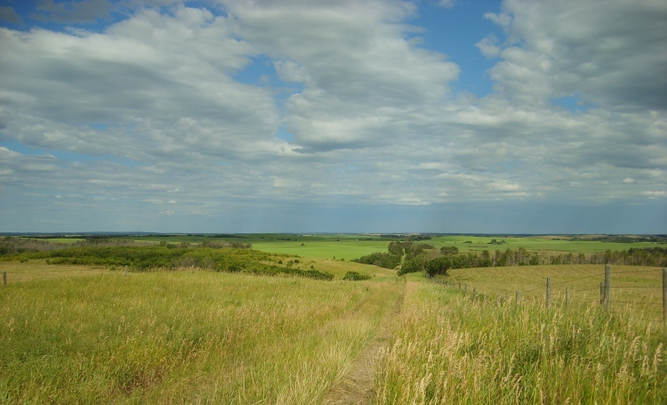 Hughenden Sky