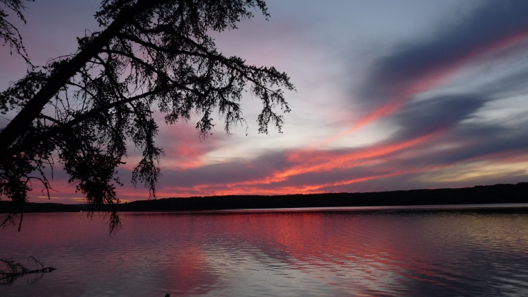 Evening Anglin Lake, Saskatchewan. Photo credit Dale Clark