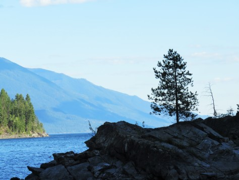 Island in Kootenay Lake, BC