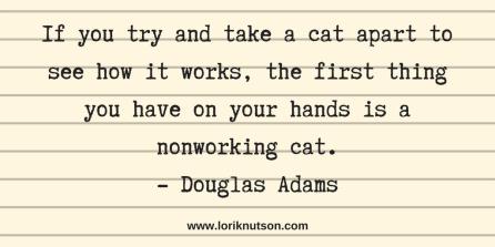 Nonworking Cat