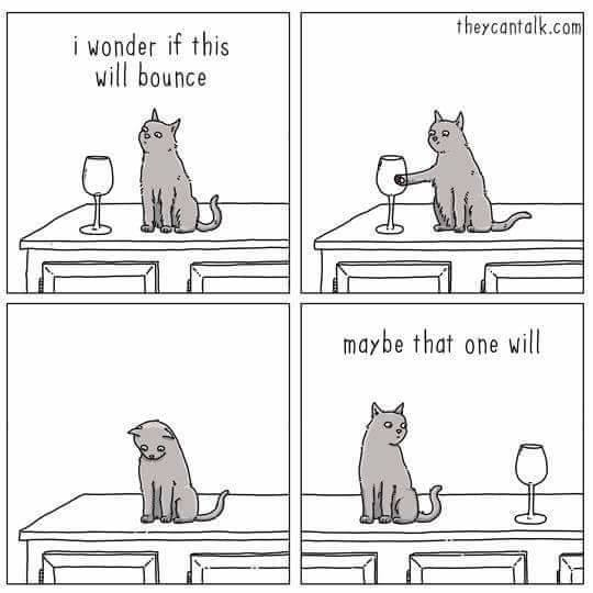 Cat Wineglass