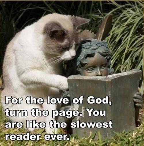Slowest Reader